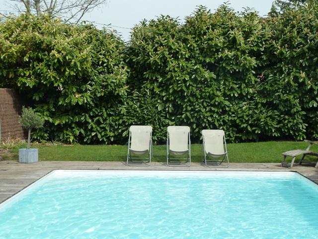 Charmante maison xvii me renovee avec piscine sur jardin for Piscine des halles